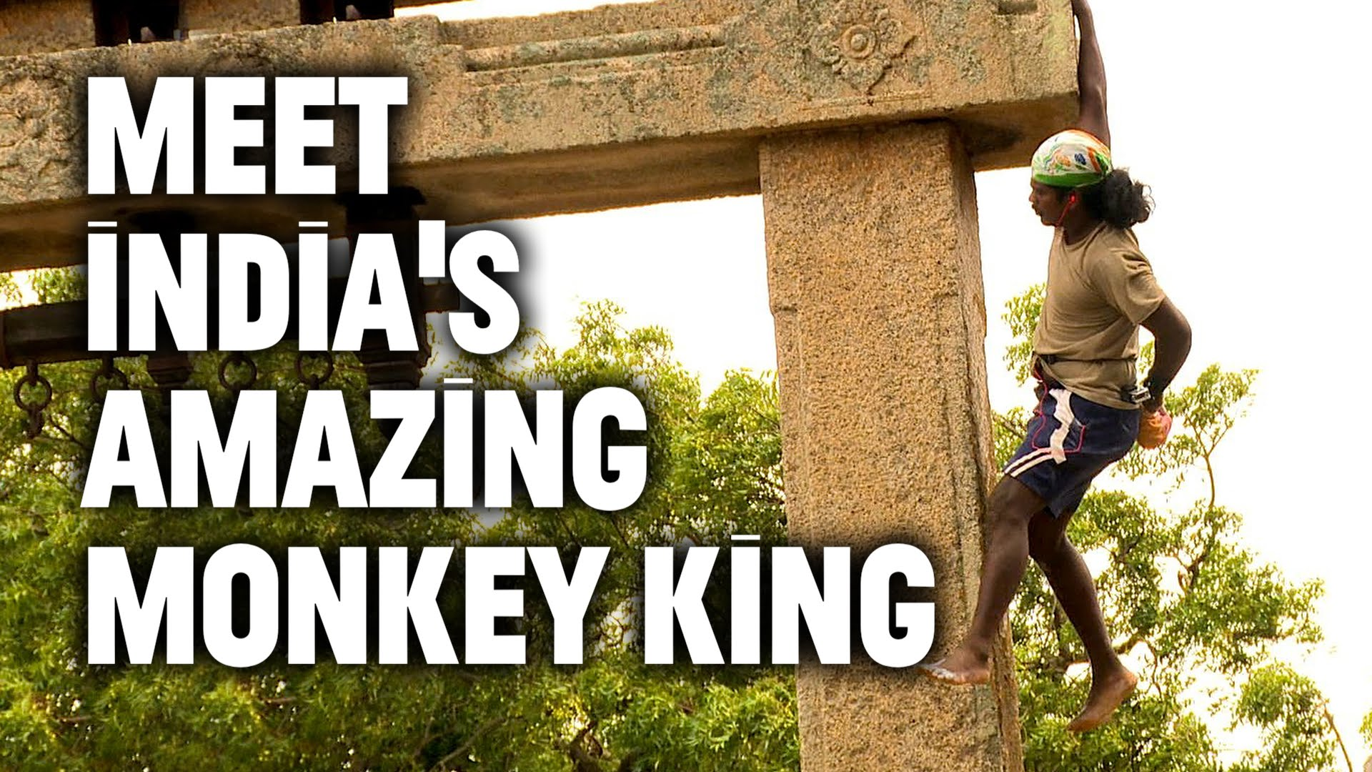 Monkey king of India